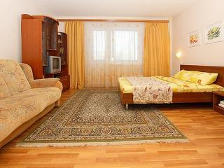 1 bedroom Resort with Internet Access in Chelyabinsk - Chelyabinsk vacation rentals