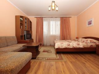 1 bedroom Apartment with Internet Access in Chelyabinsk - Chelyabinsk vacation rentals