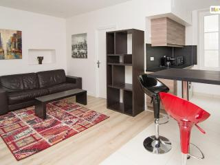 Nice 2 bedroom Condo in Tours - Tours vacation rentals