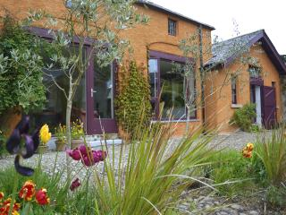 2 bedroom House with Internet Access in Dublin - Dublin vacation rentals