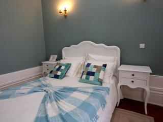 VERDE CELADON - CENTENARY FONTAINHAS APARTMENTS - Porto vacation rentals