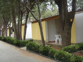 BUNGALOW APARTMENT - Marina di Camerota vacation rentals
