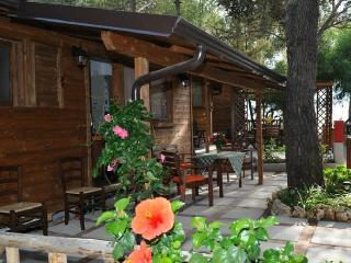 Mobile Home - 2 - Marina di Camerota vacation rentals
