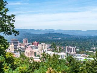 Best Views in Wnc/Hot Tub/Sauna/No Neighbors - Asheville vacation rentals