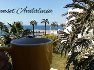 Beautiful 2 bedroom Caleta De Velez Apartment with Internet Access - Caleta De Velez vacation rentals