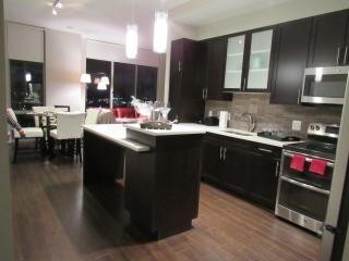 LUXURY 2BR PENTHOUSE Apt.  The Reston Center - Reston vacation rentals
