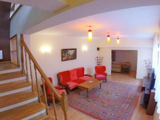 Fantastic Villa, 2 Floors in Center Bucarest - Bucharest vacation rentals