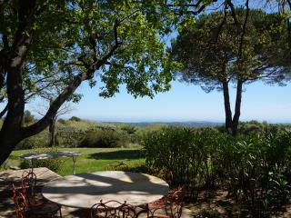 THE CABINET MINISTER'S COTTAGE: HISTORIC PROPERTY - Le Rouret vacation rentals