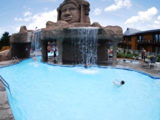 NOW 20% OFF! FREE WATERPARK ON PROPERTY! - Wisconsin Dells vacation rentals