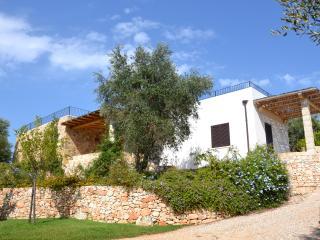 Wonderful VILLA PONENTE  with spacious garden - Salve vacation rentals