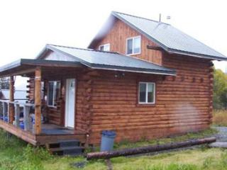 Nice Cabin with Internet Access and Long Term Rentals Allowed - Ninilchik vacation rentals