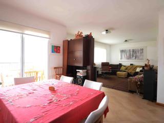 4 bedroom Apartment with Balcony in Diadema - Diadema vacation rentals