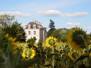 B&B Chateau La Mothaye - Loire Valley - Brion - Brion vacation rentals