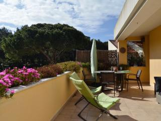 NEW PINE TREE AND POOL APARTMENT - Cascais vacation rentals