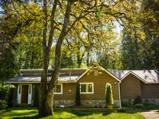 3 bedroom House with Internet Access in Maple Ridge - Maple Ridge vacation rentals