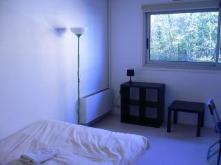 Bel appartement meublé - Rouen droite - Rouen vacation rentals