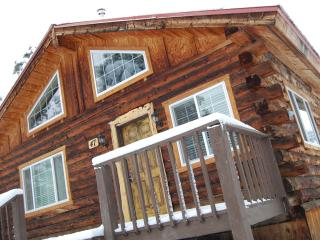 A little cabin in a great big paradise! - Pagosa Springs vacation rentals