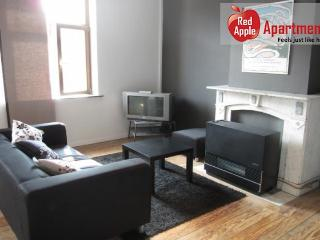 Very Practical 2 Bedrooms Apartment Near The City Center! - 7202 - Liege vacation rentals