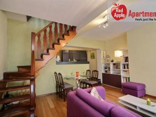 Fantastic House with Spacious Terrace in Historical Liege - 7256 - Liege vacation rentals