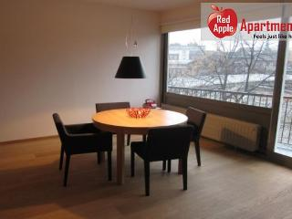 Very Pleasant Studio with Balcony and View on the Meuse! - 7258 - Liege vacation rentals