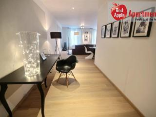 Superb 2-bedroom Apartment with Terrace in the Center - 7269 - Liege vacation rentals