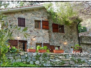 Moigo Apartments - App. Corniglia - Corniglia vacation rentals