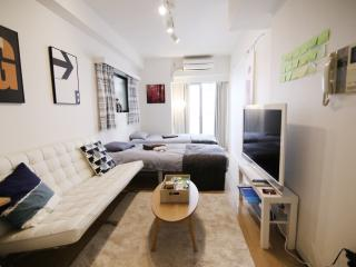 Lovely House with Internet Access and A/C - Chuo vacation rentals