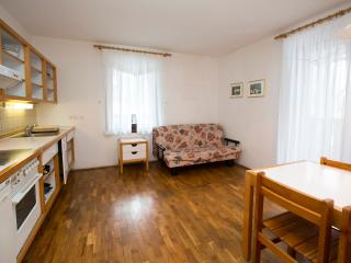 Apartment KOMARCA 2 (Apt. Savica by Bohinj Lake) - Bohinjsko Jezero vacation rentals