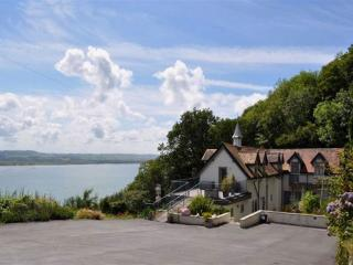 Nice Cottage with Internet Access and Television - Aberdovey / Aberdyfi vacation rentals