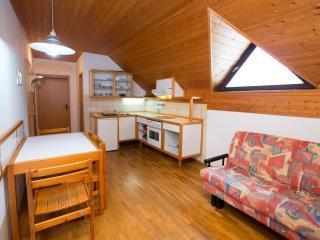 Apartment SLEC 7 (Apartment House Ob Savici) - Bohinjsko Jezero vacation rentals