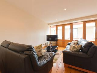 Penthouse across from templebar - Dublin vacation rentals