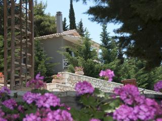 GreekVIllas Lefkada - Idyllic Villas  Sharing Pool w Amazing views & close to village - Lefkas vacation rentals