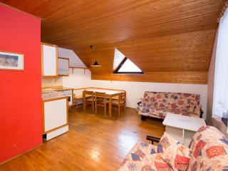 Apartment JEGLIC (Apt. Savica by Lake Bohinj) - Bohinjsko Jezero vacation rentals