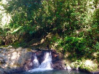 Cabin Mountain Escape - Utuado vacation rentals