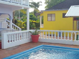 Cinnamon Studio with pool, Wi-Fi close to beaches - Ocho Rios vacation rentals