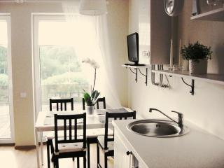 Scandinavian style apartments in Palanga - Palanga vacation rentals