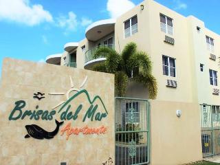 Brisas del Mar1B- 3 bed/2bath apt on 413 - Rincon vacation rentals
