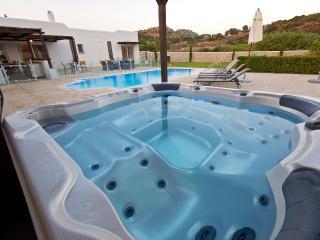 Aurai villa close to Ladiko with pool & Jacuzzi - Ladiko vacation rentals