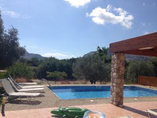 Beautiful pool villa close to sandy beach Kolymbia - Kolimbia vacation rentals