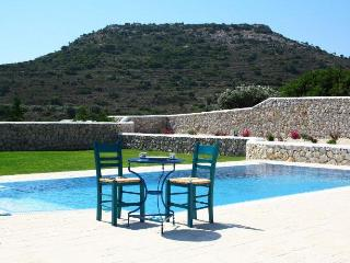 Luxury pool & outdoor Jacuzzi ,Ladiko -Aglaia - Ladiko vacation rentals