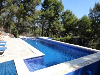 Charming Villa Luna with large private pool - Olivella vacation rentals