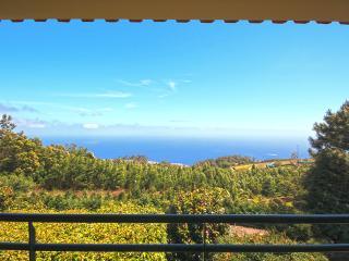 Villa Santo da Serra - Santo da Serra vacation rentals