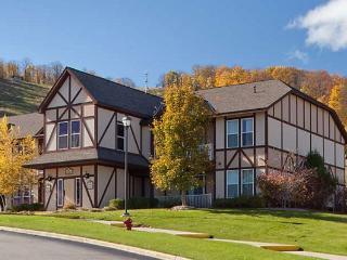 1 Bedroom Villa Mountain Run at Boyne - Boyne Falls vacation rentals