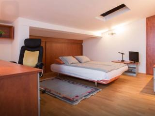 3 bedroom apartment near to center - Zagreb vacation rentals