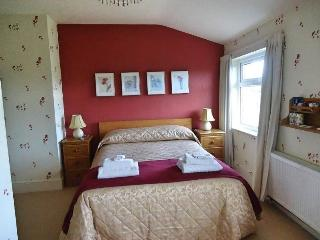 Heather Lodge Bed and Breakfast with home baking - Galway vacation rentals