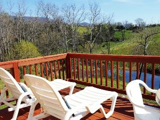Cozy 1 bedroom Rileyville House with Deck - Rileyville vacation rentals