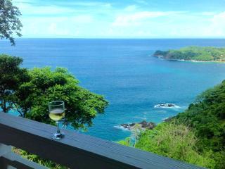 Paradise Point Villa - Breathtaking Sea Views! - Castara vacation rentals