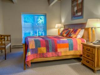 The West 3238 - Steamboat Springs vacation rentals