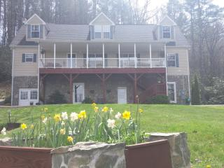 3 bedroom ~ Located in Valle Crucis~Air Conditioning~ Fire pit ~ Pool table ~ - Valle Crucis vacation rentals