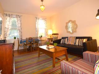 BIG APPLE NYC -East VILL-3bedroom-sleeps 6+3 - New York City vacation rentals